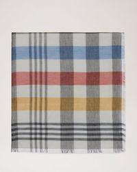 paint-brush-check-logo-scarf